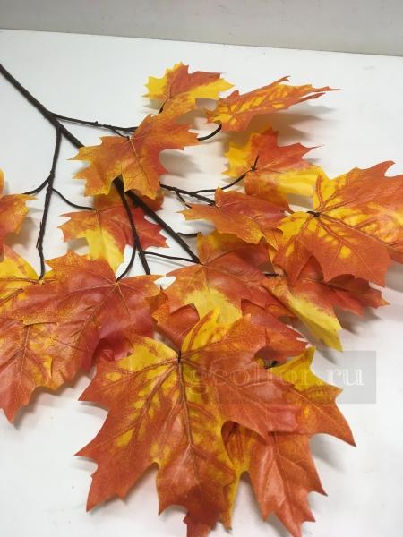 Листья клена, осень