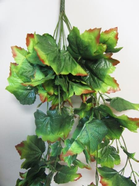 Куст зелени, 96 л