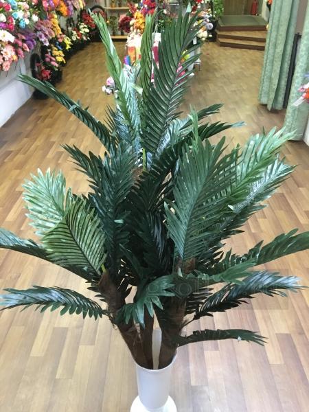 Дерево, пальма финиковая, 3 ствола, 130 см