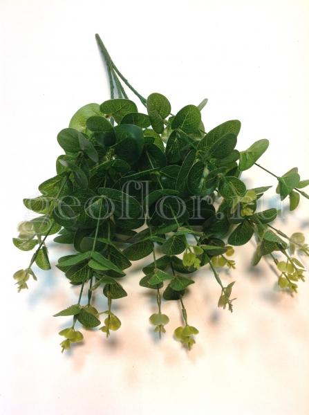 Куст из листьев эвкалипта
