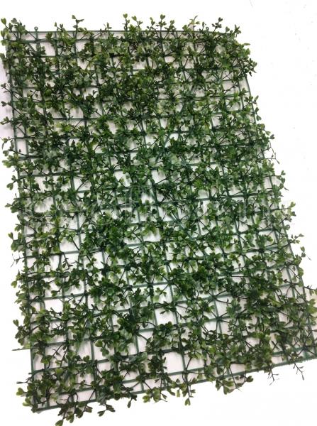 Искусственный газон, самшит, 60х40 см