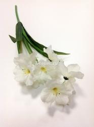Цветы петербург оптом